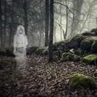Ghost in forest